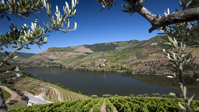 best-time-to-visit-douro-2