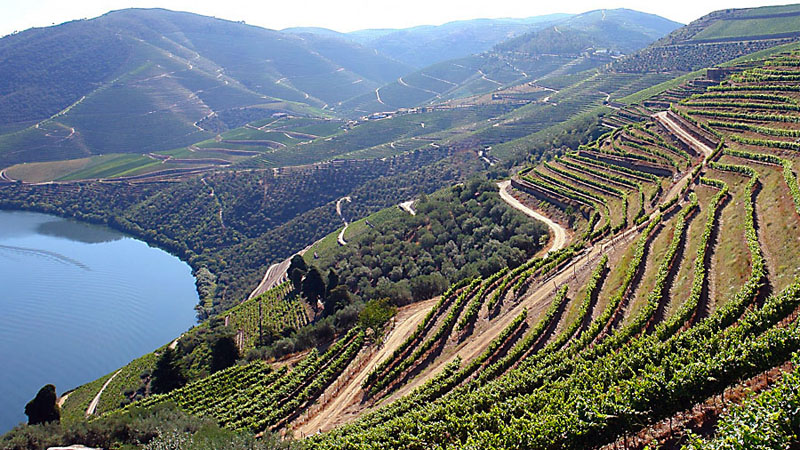 best-time-to-visit-douro-4