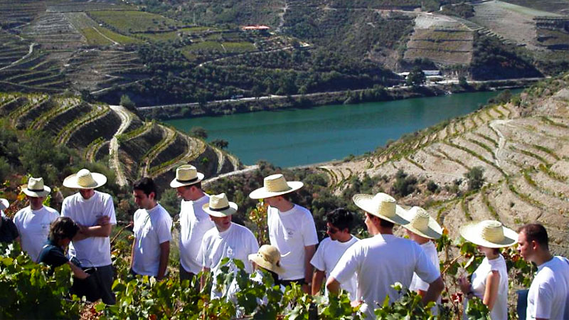 best-time-to-visit-douro-5
