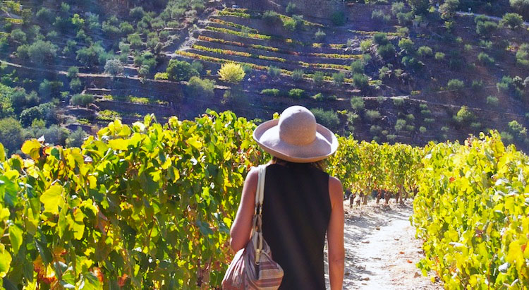 best-time-to-visit-douro-6